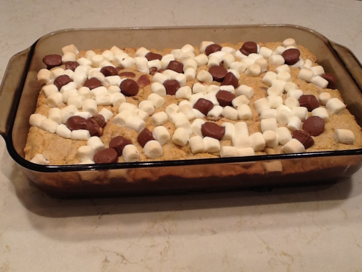 Peanut Butter S'mores Cookie Bars and What's with the kneesocks?