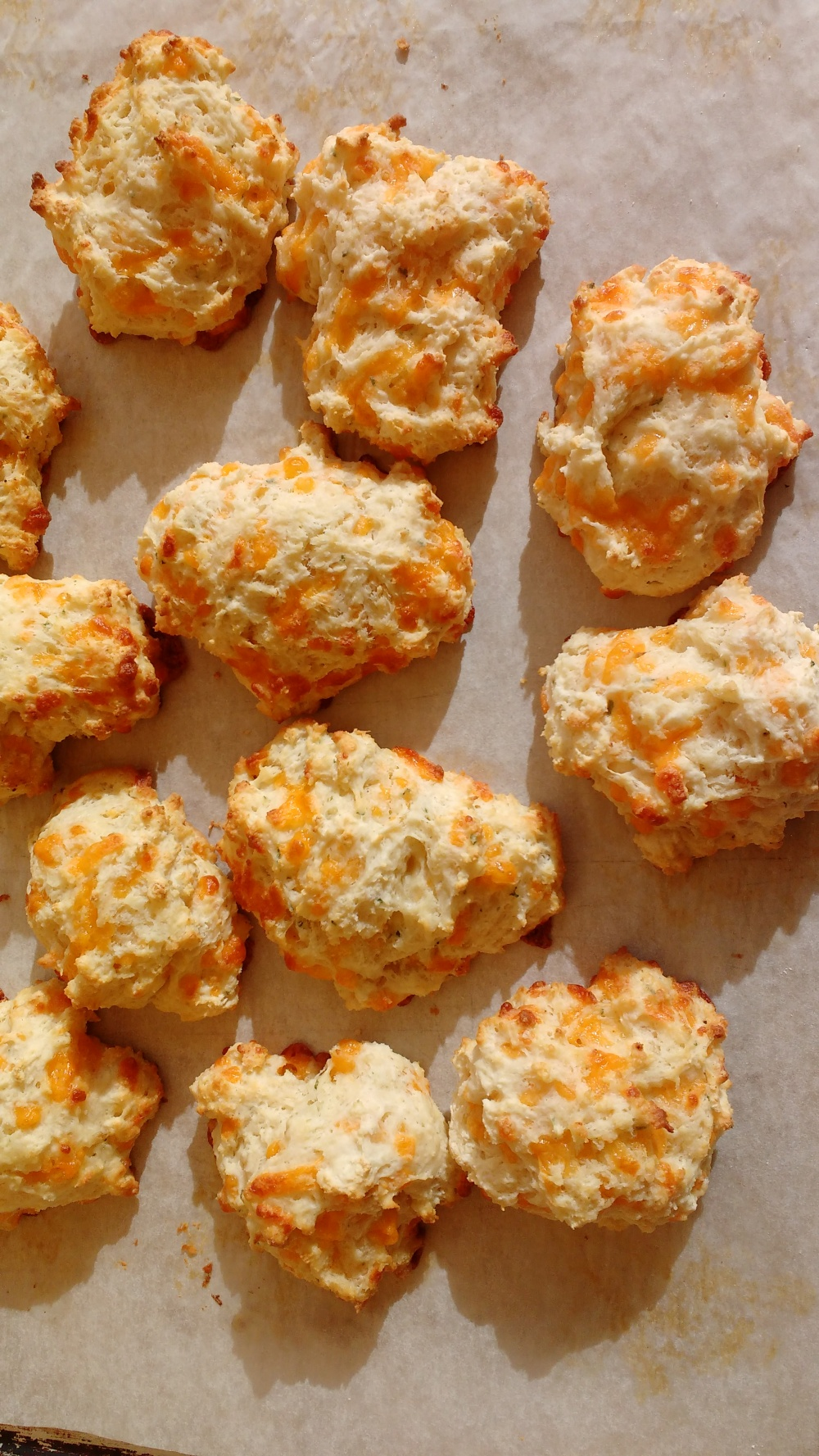 cheesy-biscuits